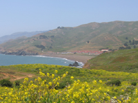marin headlands