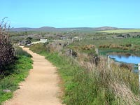 Abbott's Lagoon trail in Point Reyes National Seashore