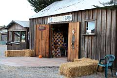 the Coffee Barn at Adobe Pumpkin Farm