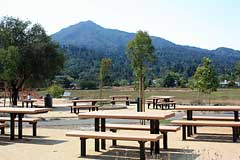 Picnic tables and Mt. Tam view at Hal Brown Park at Creekside in Greenbrae