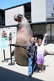 Statue of elephant seal at the Marine Mammal Center