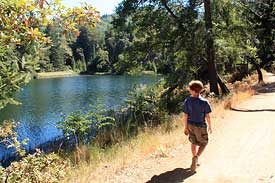 Sky Oaks / Lake Lagunitas hike with kids
