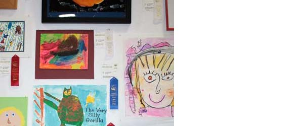 Marin County Fair entries 2014