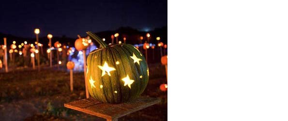 marin and bay area halloween events activities recipes crafts and more - Halloween Bay Area Events