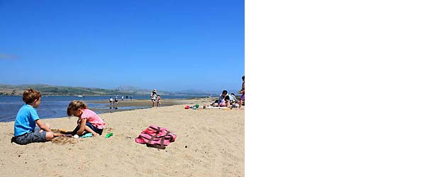 Summer Activities in Marin