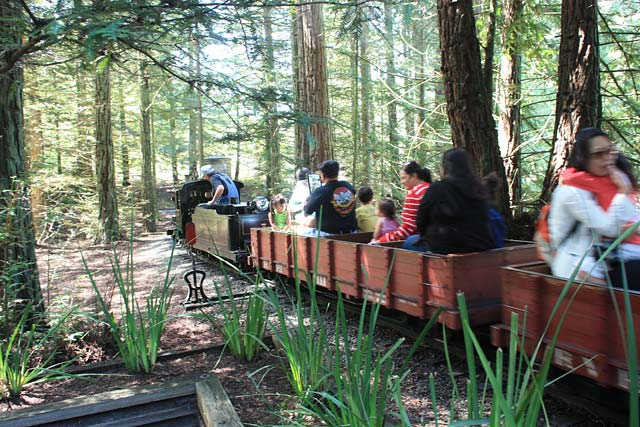 Tilden Park Steam Trains