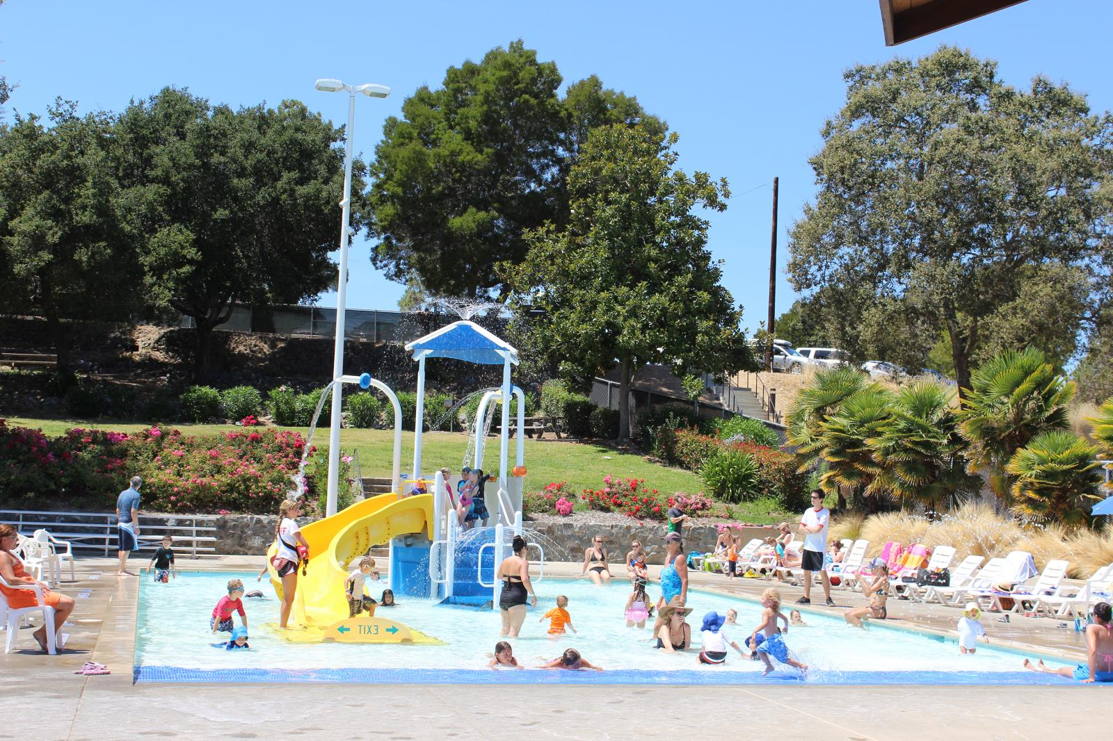 Activity pool hamilton community pool marin mommies - Hamilton swimming pool san francisco ...