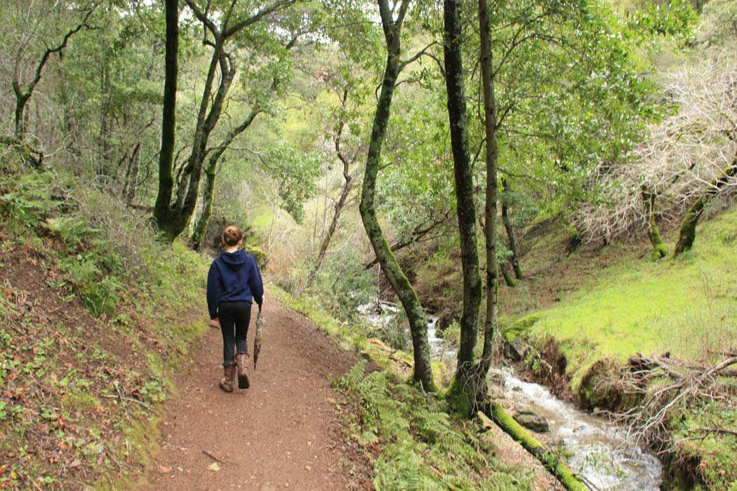 best easy day hikes san jose best easy day hikes series