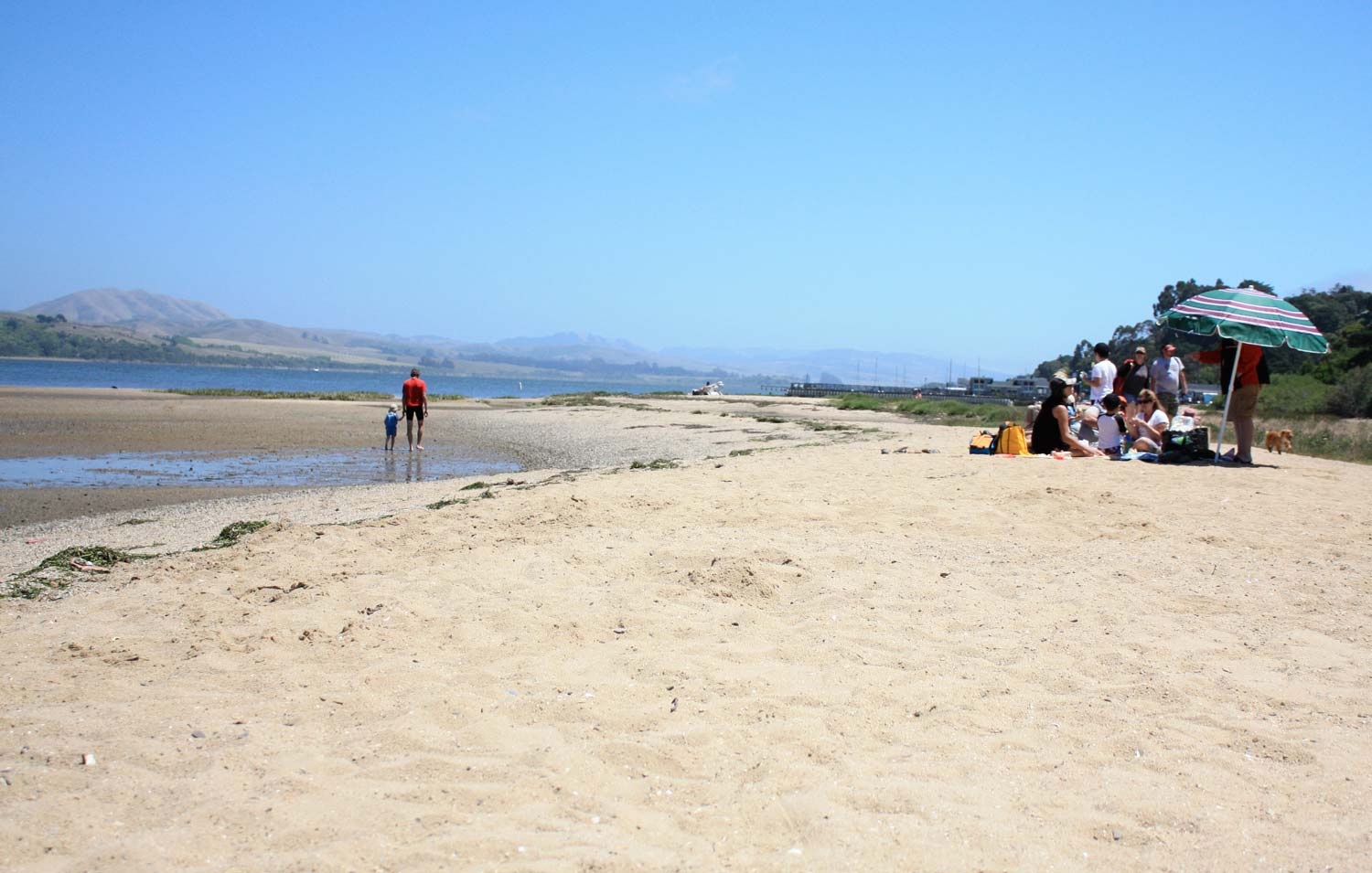 Beaches in Marin County - The Outdoors | Marin Convention