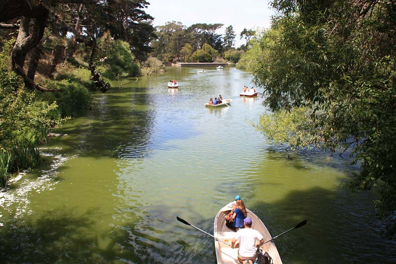 explore golden gate parks stow lake by boat marin mommies