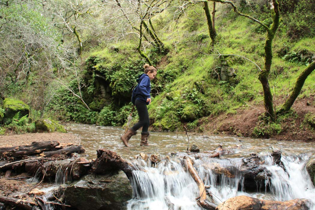 Take A Family Hike To The Fairway Waterfall In Novato