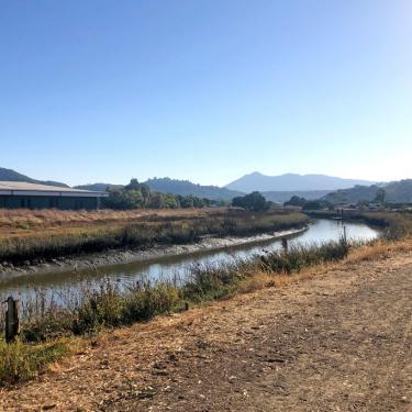 McInnis Marsh San Rafael