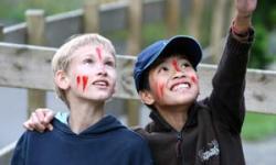 Marin Camp Fair 2020