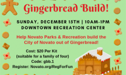 Gingerbread Build! Novato