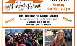 4th Annual Novato Harvest Festival