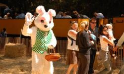 Eggstraordinary Easter Egg Hunt, Roaring Camp Railroads