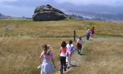 Wildcare Ring Mountain Hike