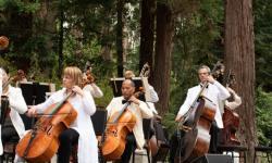 SF Symphony on Stern Grove