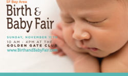 San Francisco Birth and Baby Fair