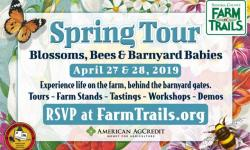 Spring Tour: Blossoms, Bees & Barnyard Babies