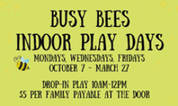 Busy Bee Indoor Play Days, Downtown Recreation Center, Novato