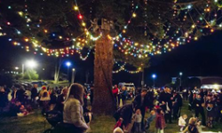 The Presidio's Traditional Tree-Lighting Ceremony