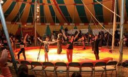 American Crown Circus San Rafael