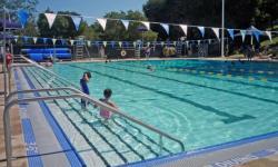 Hamilton Community Pool Novato