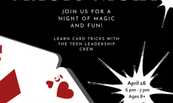 Magic Night poster