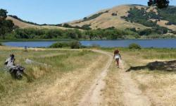 Stafford Lake Park Novato