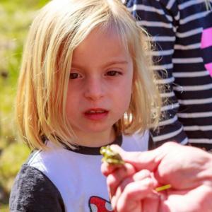 child observing nature