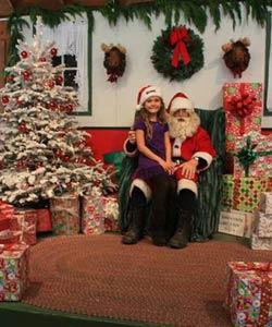 Little Hills Christmas Tree Farm–Petaluma
