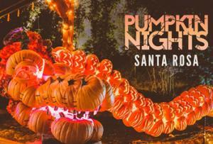 Pumpkin Nights Santa Rosa