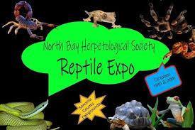 Reptile Expo 2019