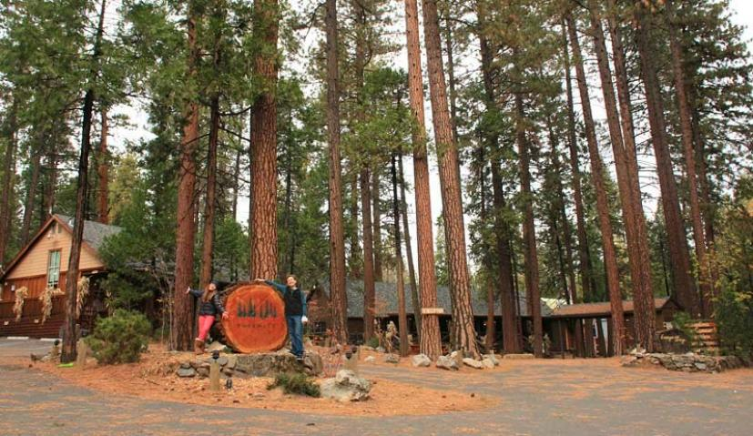Evergreen Lodge Yosemite
