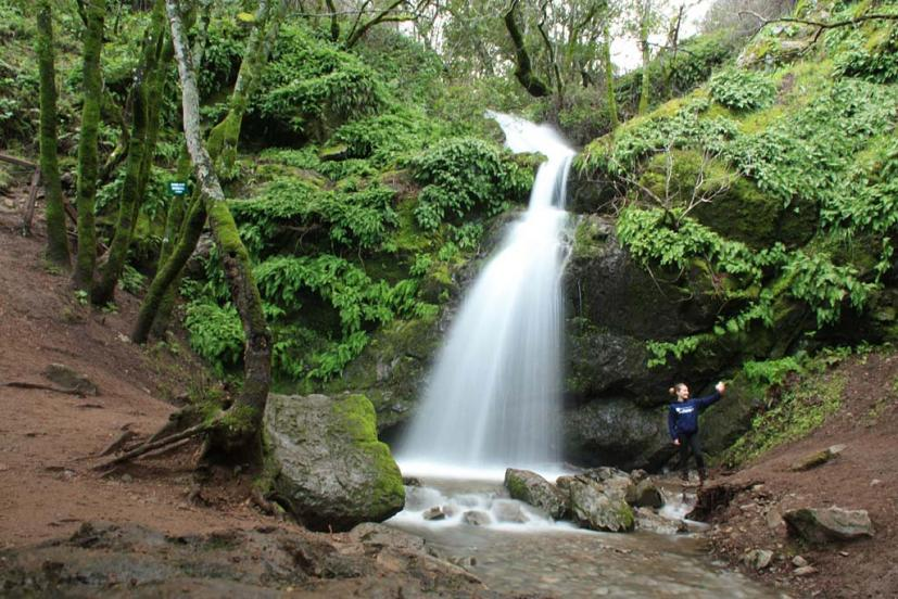 Fairway waterfall Novato