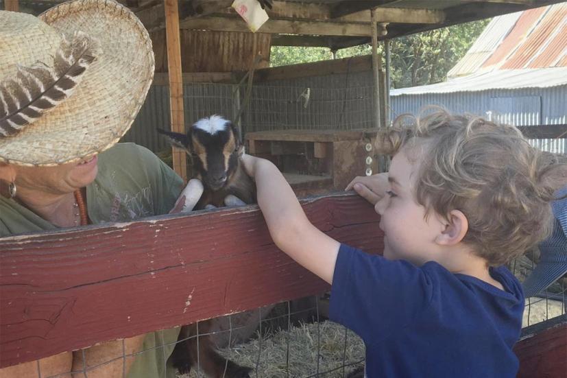 Family Nature Day Vilda Tara Firma Farms