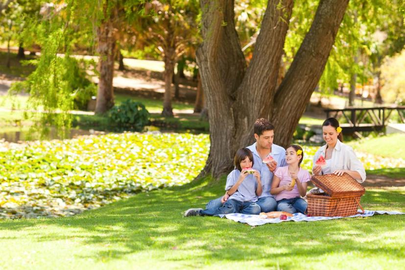 Best Father's Day Picnic Spots