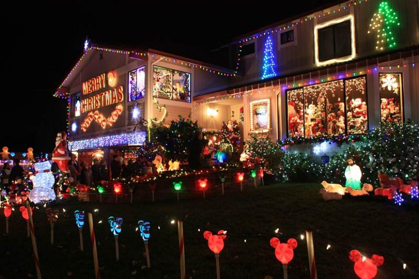 north bay christmas tree farms and lots festive holiday teas holidays in san francisco and visit one of marins amazing lighted houses - Mickey Mouse Christmas House Decorations