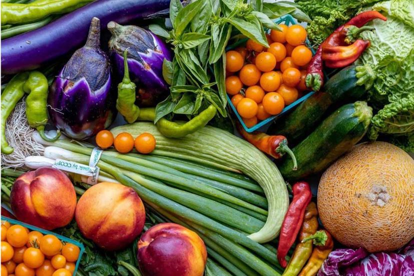 Read good greens farm box