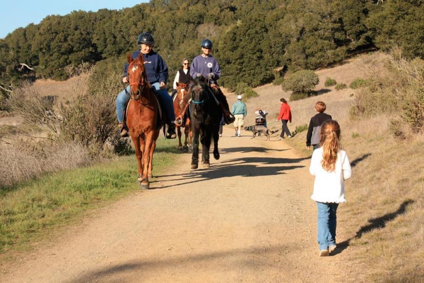 Rush Creek Preserve Novato