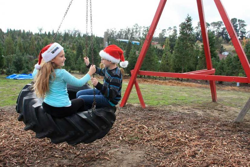 U-Cut Christmas Tree Farms in Sebastopol | Marin Mommies