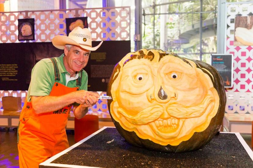 SuperNatural California Academy of Sciences pumpkin carving