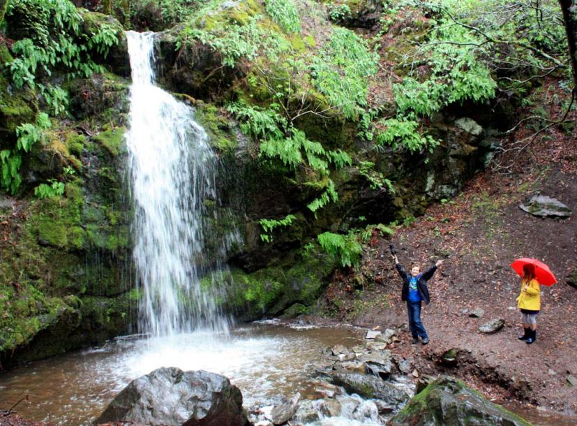 Take a Family Hike to the Fairway Waterfall in Novato | Marin Mommies