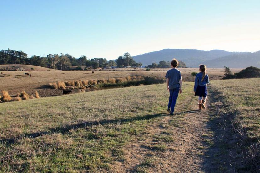 Tomales Bay Trail winter hike with kids in West Marin