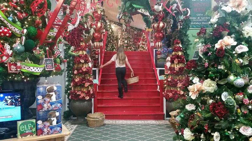 traditionally our first holiday outing in marin is always to the famous christmas house at west end nursery in san rafael we checked out this seasons - Always Christmas