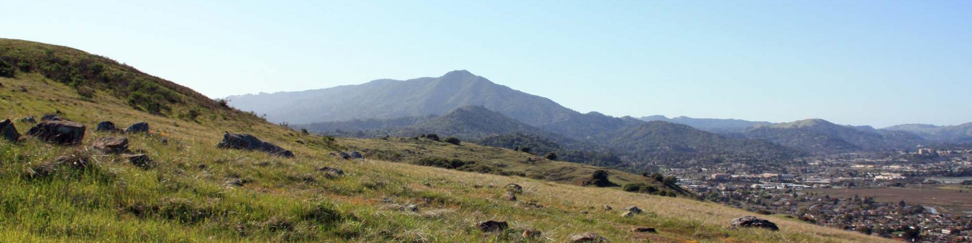 Mt. Tam Marin County