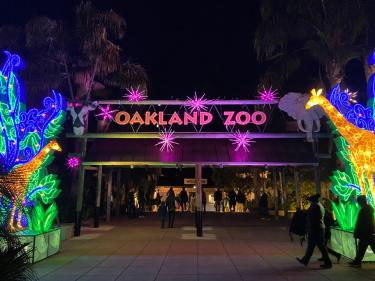 Glowfari Oakland Zoo lantern festival