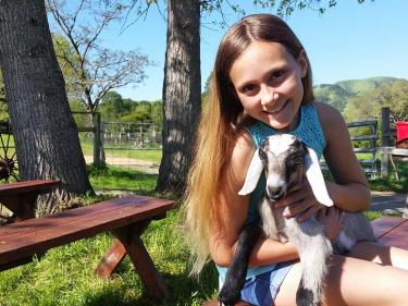 Baby animal at Windrush Farm